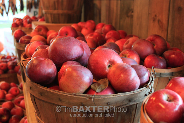 Western New York apples